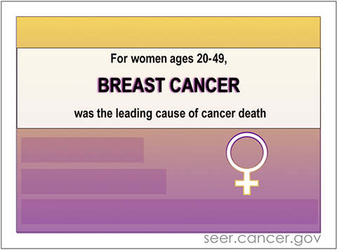 During 2012-2016, breast cancer death rates among women age 20–49 were more than double the rates for any other cause of cancer death