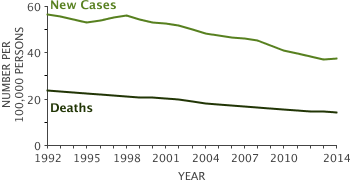 Line graph showing Number of New Cases and Deaths per 100,000 from 1992-2014